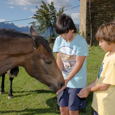 Agroturismo en el Pirineo